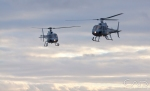 Dual military helicopters