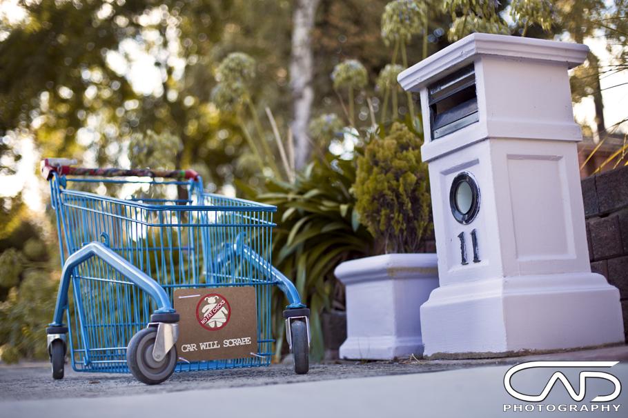 JDM Shopping Trolley