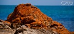 Red Rock by the Ocean Web #CreativeGallery