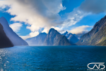 New Zealand, Milford Sound and its snowy mountains, photograph taken above the water from a Royal Caribbean cruise ship.