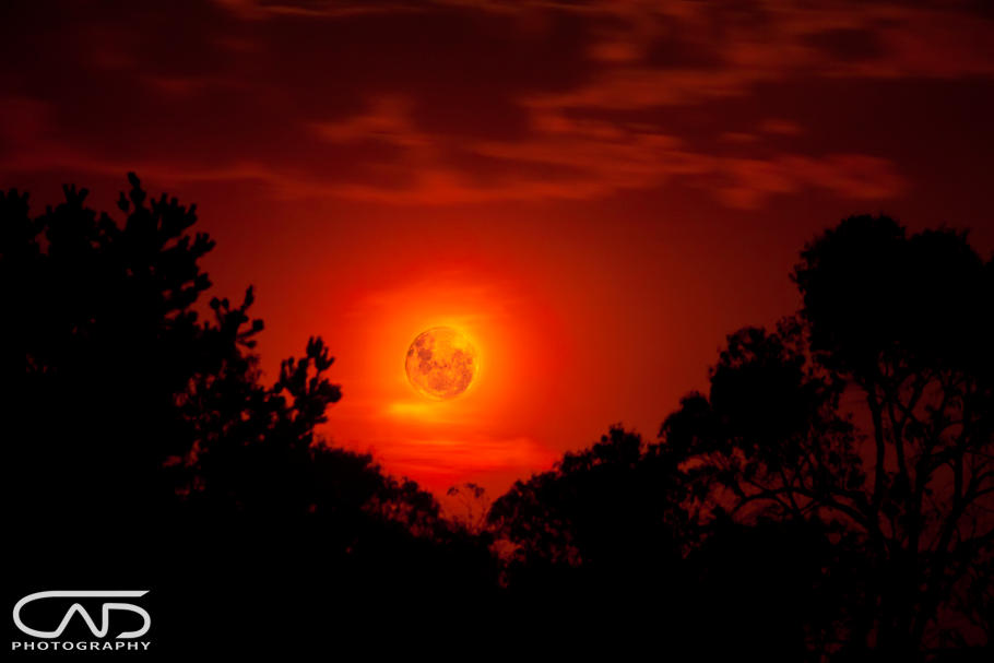 red moon photography - photo #23