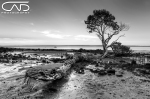 Tenby Point, Gippsland, Victoria, Australia near Phillip island black and white sunset.